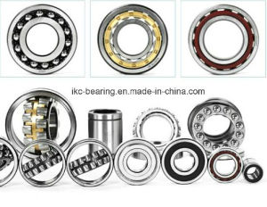 Wholesale Bearings in Dubai, USA, Germany, South Africa pictures & photos