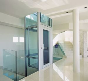 Vvvf Passenger Home/Villa Elevator of Good Quality pictures & photos