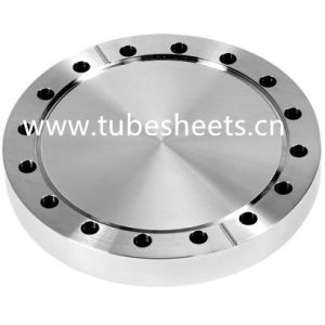 Carbon Steel Forged Blind Flange P250gh of Lst Company
