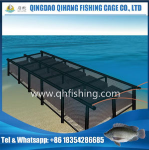 Pontoon HDPE Square Catfish Farming Net Cage pictures & photos
