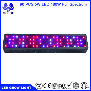 2017 New LED Grow Light 500W for Indoor Plants Greenhouse pictures & photos