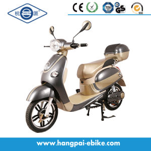 2016 48V 350W Pedal Electric Bike Electric Scooter (HP-XGW)