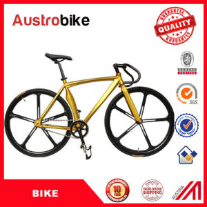 Wholesale The Lowerst Price Fixed Gear Bike 700c Bicycle Single Speed Cheap Fixed Gear Bike MTB Bike Free Tax with Ce Free Tax