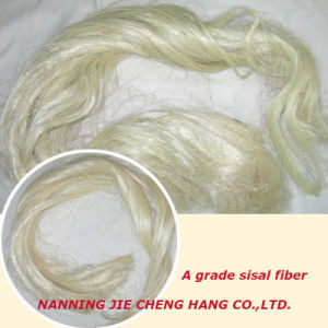 B Grade Sisal Fiber for Making Ropes and Carpets