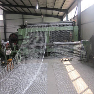 Gabion Box PVC Coated Hexagonal Wire Mesh pictures & photos