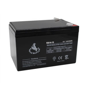 12V 14ah AGM Lead Acid Battery for UPS