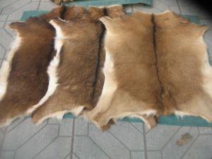 Goat Skin Pelts Rugs Fur