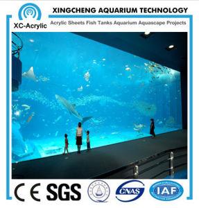 Large Transparent Acrylic Sheet for Aquarium by Customized/ Thick Acrylic Sheet of Acrylic Sheet Aquarium