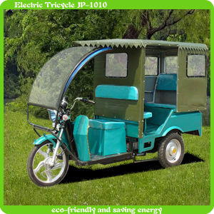 New Economic and Fashionable Adult Tricycle
