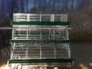High Quality Galvanized Automatic Layer Cage Certificate ISO9001