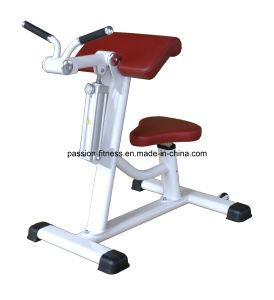 Bicep/Tricep Gym Fitness Equipment/Circuit Hydraulic Training Equipment with SGS