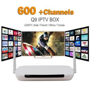 Android TV Box Q9 Media Player DDR3 1g/8g WiFi 1 Year IPTV Subscription  Leadtv IPTV Account Europe Arabic Sky IPTV Channels