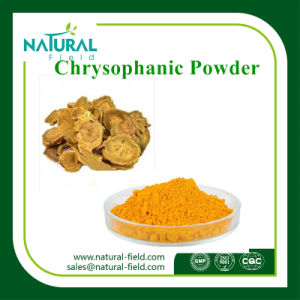 Free Samples Chrysophanol 98% CAS: 481-74-3 Rhubarb Extract