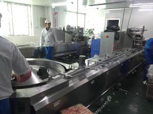 Automatic Feeding and Package Machinery for Food/Chocolate