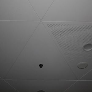 Aluminum Ceiling Panel with Customized Design for Interior Decoration pictures & photos