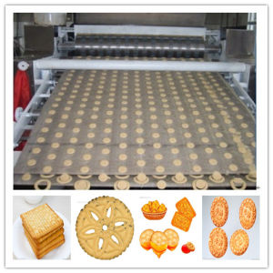 Fully Automatic Production Line for Biscuit pictures & photos