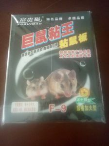 China Rat Trap, Rat Trap Wholesale, Manufacturers, Price