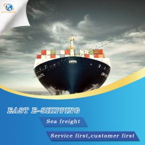 China Guangzhou Shipping To Usa, Guangzhou Shipping To Usa