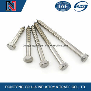 Stainless Steel Hexagon Head Wood Screws pictures & photos