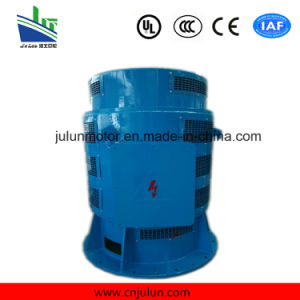 Vertical Low Voltage Motor 3-Phase Asynchronous Motors AC Motor Induction Electrical Motor Special for Axial Flow Pump Jsl14-12-180kw