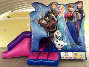 Inflatable 5 in 1 New Jumping Frozen Bouncer pictures & photos