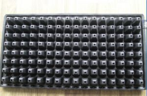128 Cells Balck PS Flower Pot for Garden Black HIPS Seed Tray pictures & photos