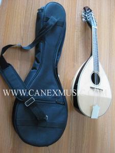 Music Instruments/Mandolin / Banjo / Ukulele (Canex M2) pictures & photos