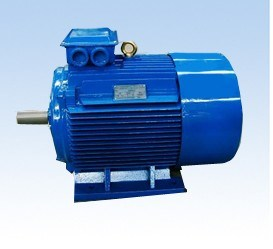 Three-Phase Induction Motors (Y2 Series)