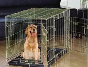 Dog Cage with Two Doors (DG-36)