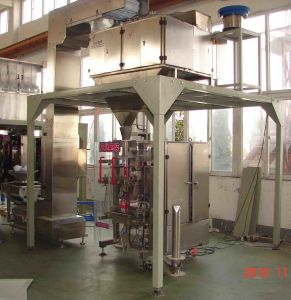 Automatic Seeds Packing Machine (VFS5000FS) pictures & photos