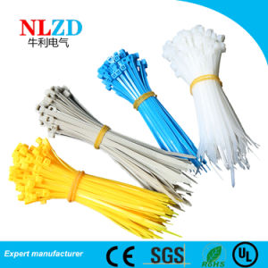 0a376d5d2634 China Full sizes Nylon 66 Cable Ties With CE RoHS UL certifications ...