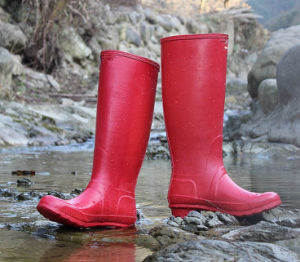 452f5dcbc2d76 Various Colour Waterproof Rubber Rain Boots, Gao Quality Woman Rubber Boot,  Popular Style Ladies Rubber Boot