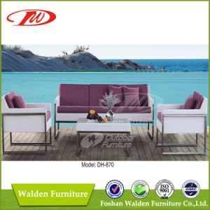 PE Rattan Outdoor Furniture Dh-870 pictures & photos
