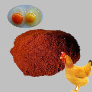 Pigment Red Iron Oxide Red Pigment Feed Grade Animal Nutrition pictures & photos