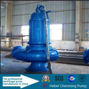 Vertical Cast Iron Submersible Pump for Wastewater Treatment Industry