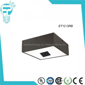 LED Ceiling Lamp Ceiling Light