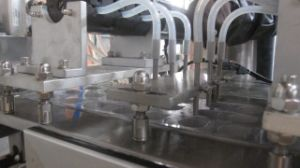 Dpp-250 Model Ampoule Packing Machine