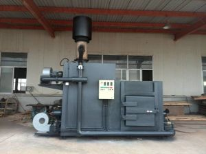 Animal Incinerators Type Pets Cremation Equipment Medical Incinerator pictures & photos