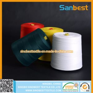 Hot-Sale Spun Polyester Bag Closing Thread 500g, 1kg
