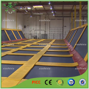 Standard Euro Jump Trampoline Park for Sports pictures & photos
