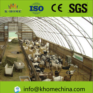 Steel Structure for Breeding Farm pictures & photos