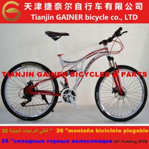 China Tianjin Gainer 26
