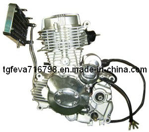 Cg250 Motorcycle Engine (167FMM)