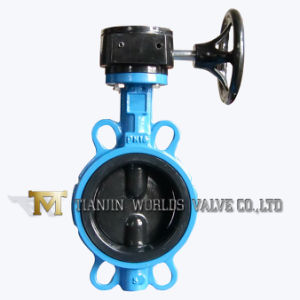Double Half Stem Rubber Coating Butterfly Valve (D371J)