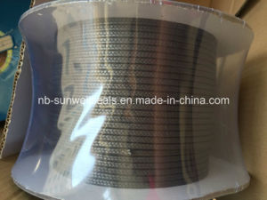 Pure Graphite PTFE/Teflon Packing Without Oil pictures & photos