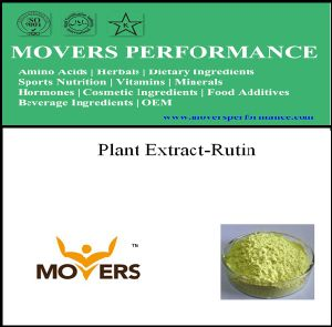 Plant Extract NF Grade Rutin pictures & photos