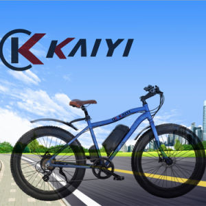 Fat Wheel Electric Mountain Bike for America Marekt