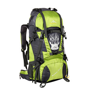 New Design and High Quality Backpack pictures & photos