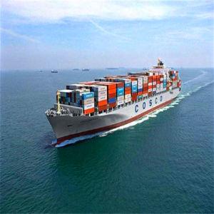 Sea Shipping From Shenzhen China to Dubai/Jebel Ali  Door to Door Service