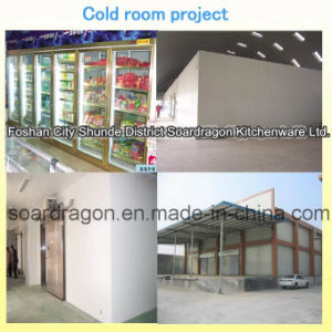 Fish and Meat Cold Room with Polyurethane Panel pictures & photos